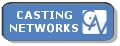 Casting Network Button